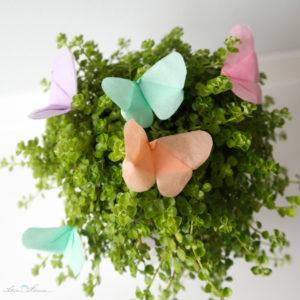 Seidenpapier Schmetterlinge Schoenherum