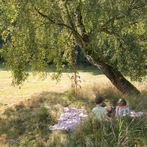 Picknick in der Natur