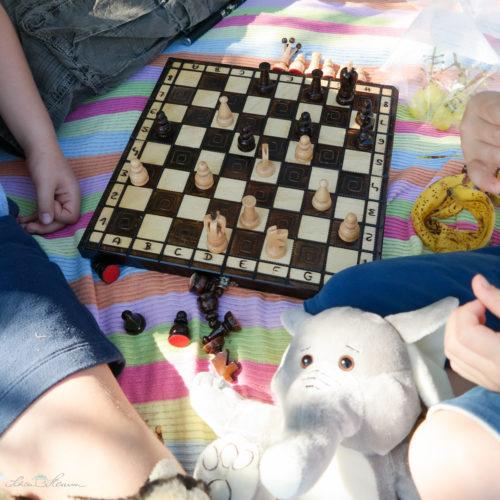 Schachpartie in der Natur. Picknickzeit.