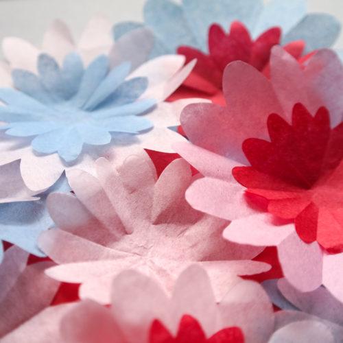 Seidenpapierblumen