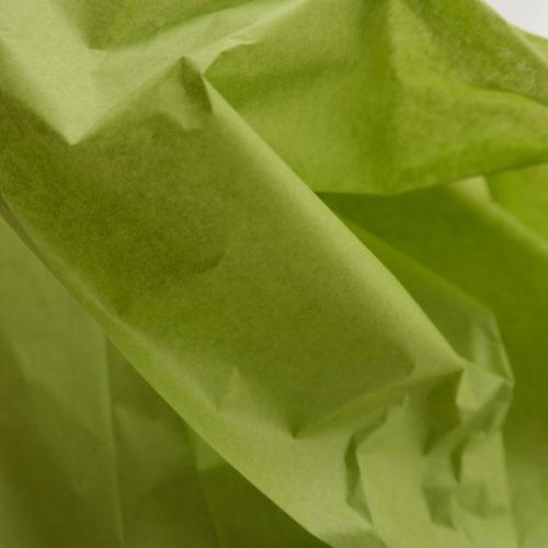 Seidenpapier Aloe grün